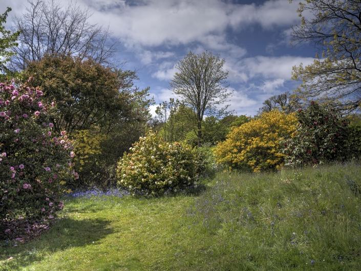 Emmets Gardens